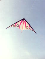 My first kite with a graphic